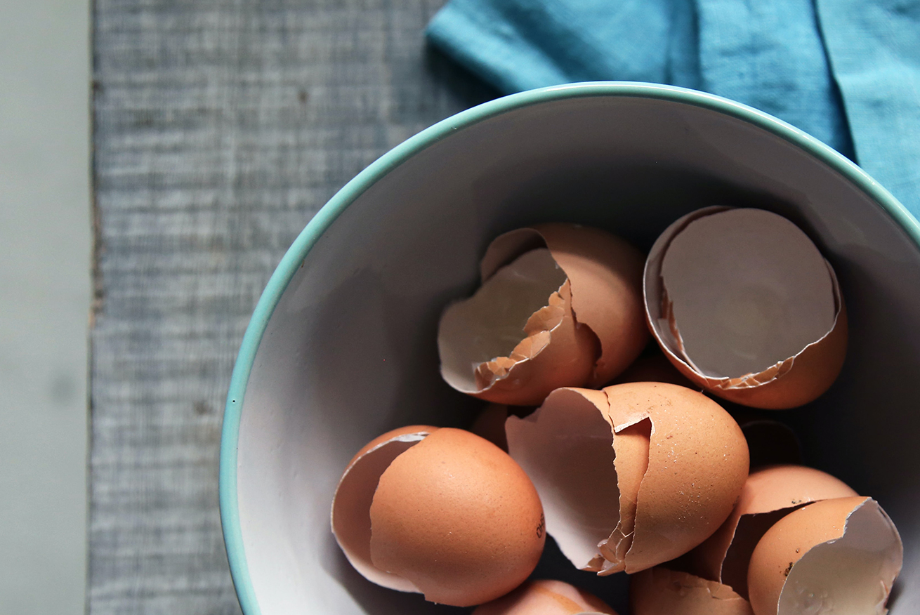Eggshells in a bowl